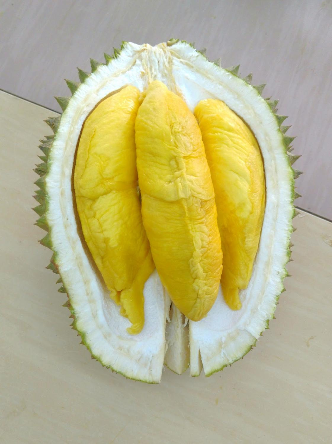 Durian, the king of all fruits, is a Malaysian delicacy.