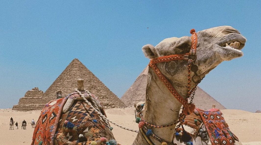Adventures in Egypt