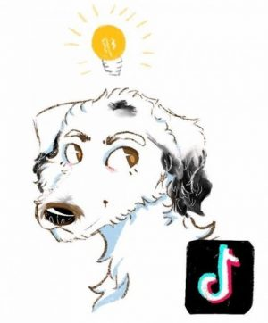 A rendering of Bunny, the talking dog, illustrated by Aaron Abdo